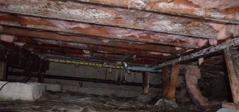 Crawl Space Cleaning
